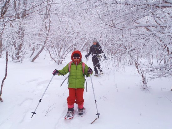 Outdoor Earth: スノーシューで冬の森をお散歩 雪の季節しか見られない景色やとっておきの穴場へ