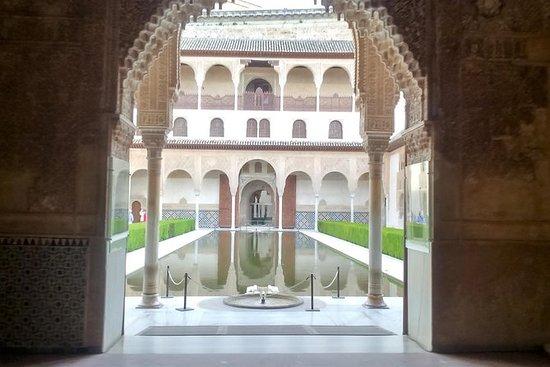 Tour privato dell'Alhambra con guida