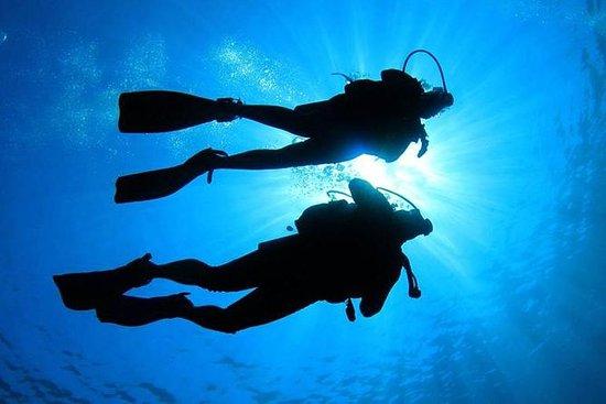 Balicasag, Virgin Island Snorkeling...