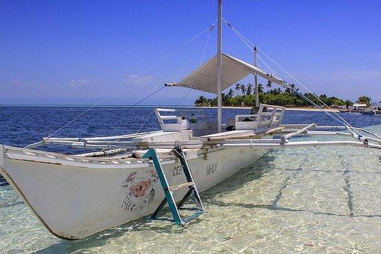 Balicasag and Virgin Island...