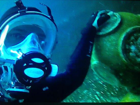 Aquatica Dive Centre Φωτογραφία