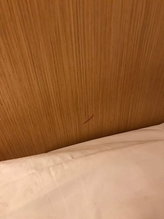 Sheraton Brussels Airport Hotel: yes, that is blood next to the pillow