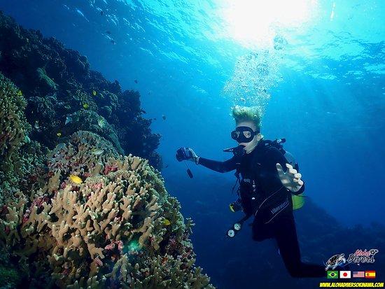 Diving in Okinwa - Mergulho em Okinawa - Aloha Divers Okinawa