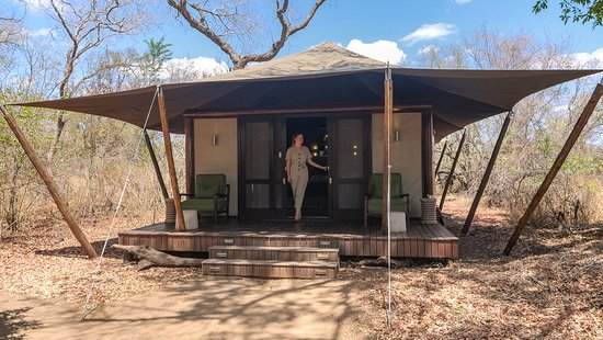 Ngala Private Game Reserve, แอฟริกาใต้: Luxury Tent Suite