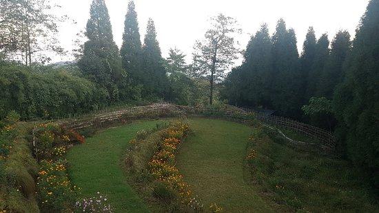 Ilam, Nepal: The Paradise Cottages Pvt. Ltd.