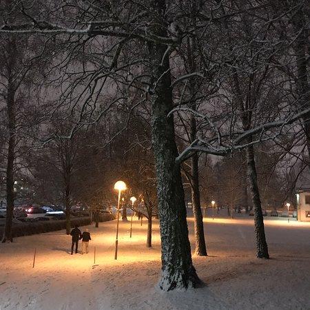 Ορέμπρο, Σουηδία: Snön föll äntligen och bildade ett skönt vinterlandskap i parken nedanför Mikaelskyrkan.