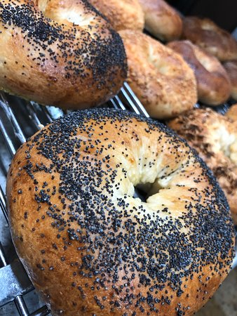 South Fork, CO : Fresh, made from scratch bagels!