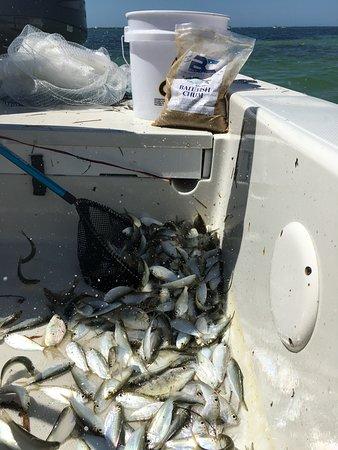 First Class Charter Fishing: Boca Coast Chum