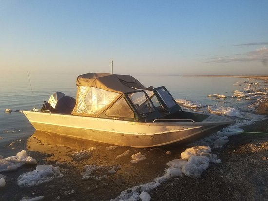 Kaktovik, Αλάσκα: Our 21' Weldcraft boat. We added a new Yamaha 150HP 4-stroke engine in 2018. The boat is low to the water, quiet and makes a good platform for polar bear viewing and photography.