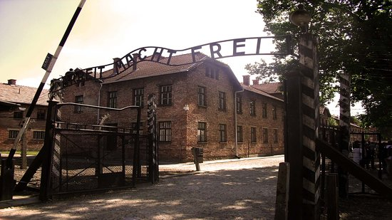 Auschwitz & Birkenau Tours - Shared Group Tours or Private Transport