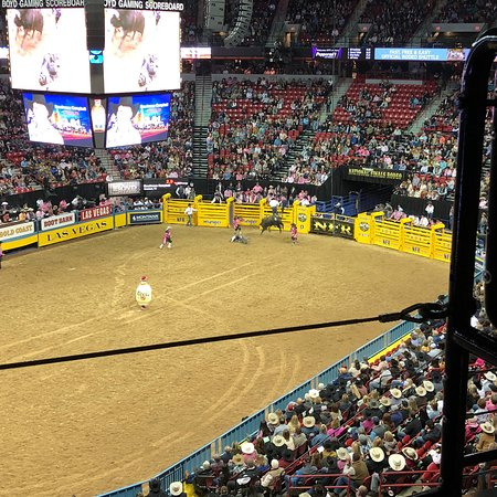 National Finals Rodeo Las Vegas 2019 All You Need To