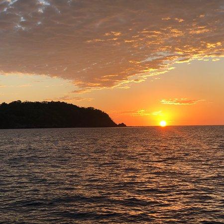 Manta Ray Sailing照片