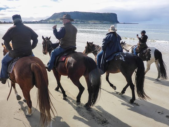 Come ride with us on deserted beaches, with the freshest air, fun guides, picture postcard scenery and beautiful horses