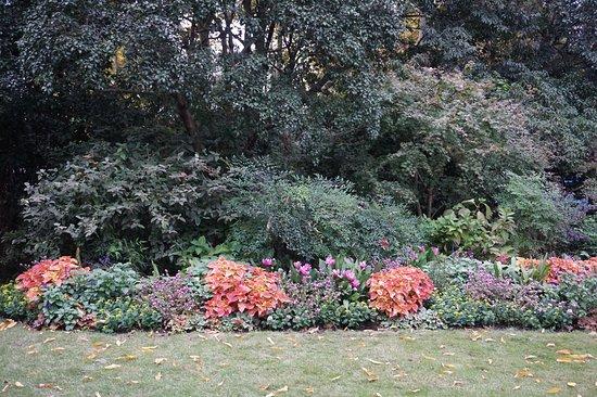 InterTrips: Flora everywhere!
