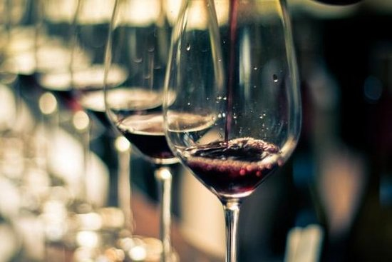 Uco Valley Vin Dagstur fra Mendoza