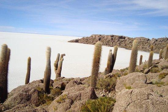 Privat dagstur Salar de Uyuni