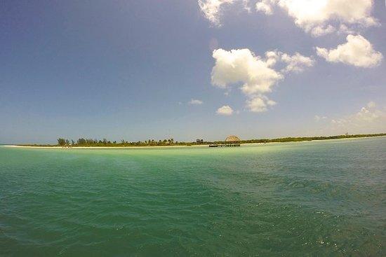 Excursion sur l'île d'Holbox au...