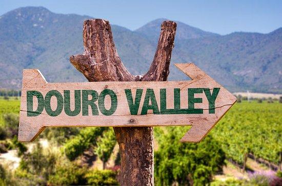 Douro Valley Vinprovning, Flodkryssning ...
