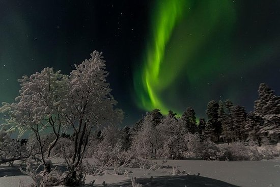 Hunting Northern Lights with Lappish...