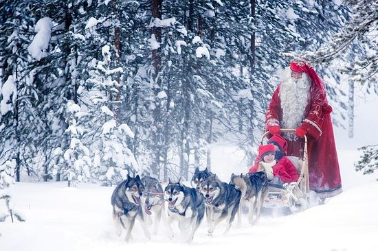 Lo más destacado de Rovaniemi Day...