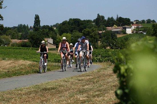 Tour en vélo électrique à Amboise...