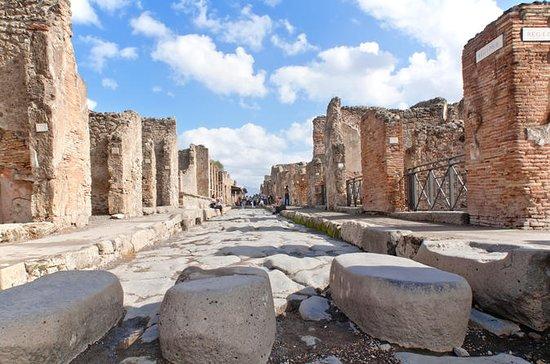 Visite privée de Pompéi et de la côte amalfitaine : Pompei and The Amalfi Coast from Sorrento