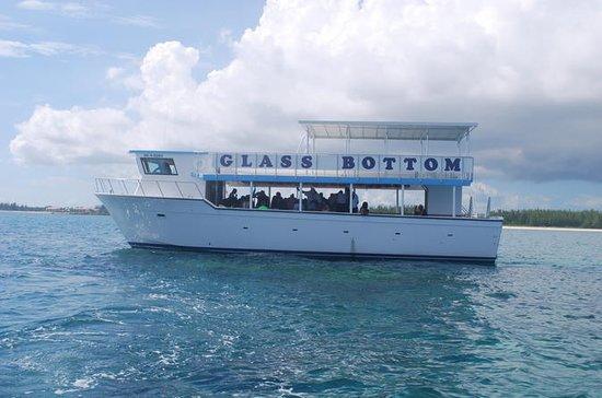 Glass Bottom Reef & Shark Encounter...