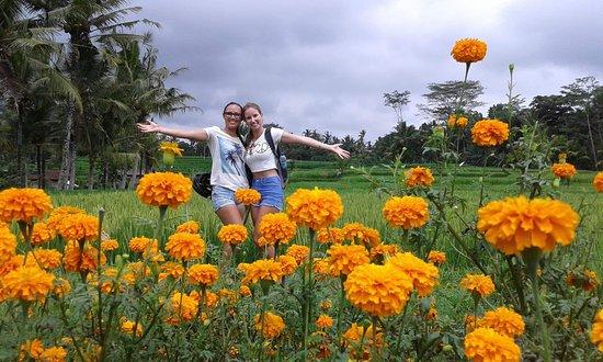 Bali Rocky Mountain Cycling Tour