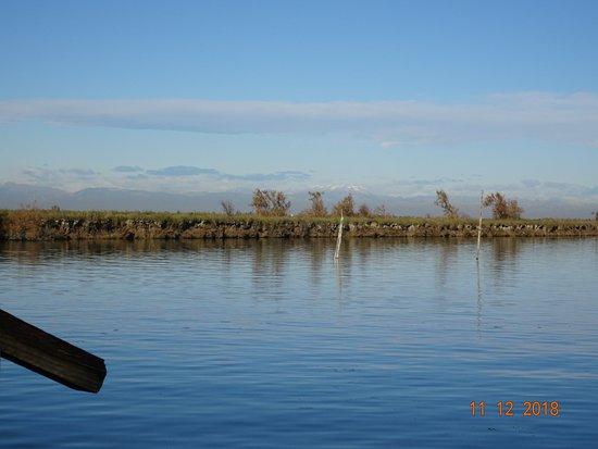 Cavallino-Treporti, Italy: Laguna Veneta prima del gelo