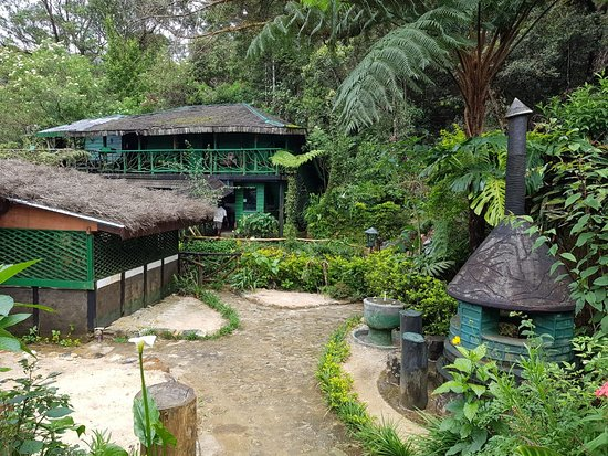 The quaint Northcove Cabana