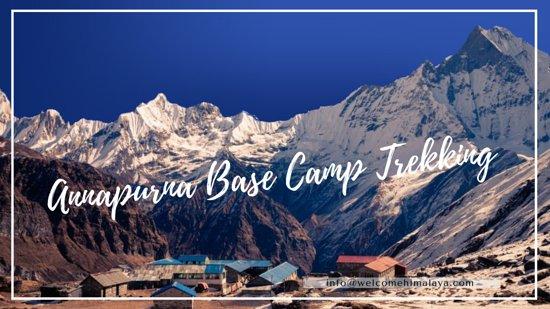 Annapurna Region, Nepal: Annapurna Basecamp Trek  ABC Trekking in Nepal.   #Annapurna #BaseCamp #Trekking #ABCtrek #Nepaltrek #HimalayanAdventure #IndependentHimalaya   Independent Himalayan Adventure Pvt. Ltd.   Thamel 29, Kathmandu 46300, Nepal.   T : +977-14249214   M : +977-9851053909   E : info@welcomehimalaya.com   [..... Quality Tourism Service Since 1991]