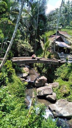 Dodiana Bali Transport: Gunung Kawi Temple Tour