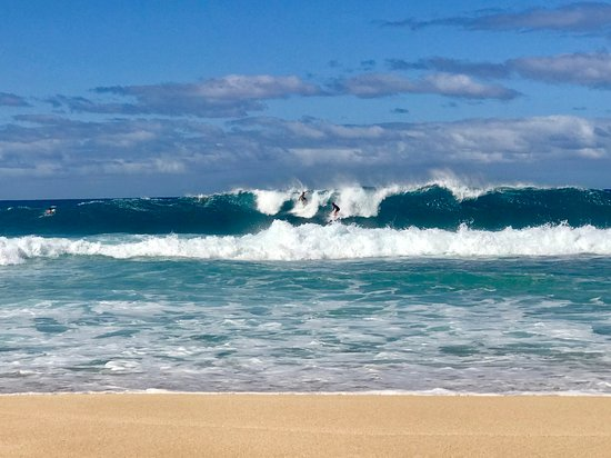 Hali`a Tours and Transportation LLC: Enjoying Big Wave Season on the North Shore of Oahu.