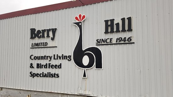 ‪Berry Hill‬