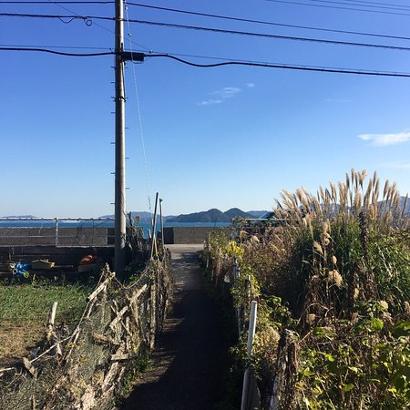 Onyujima Island: 石間浦地区。 美しい!