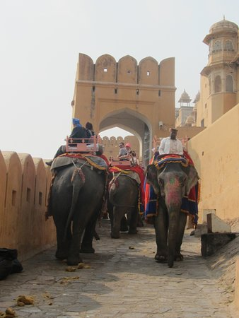 Amber Fort: 'Heavy traffic' on the causeway up to the Fort.   You can see why you should take care on this route.