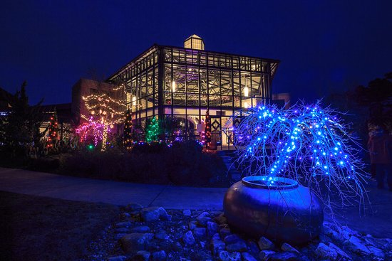 Fayetteville Nc Christmas Lights 2020 Christmas Lights at Cape Fear Botanical Garden   Picture of