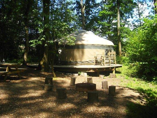 Savannah Yurt. Sleeps 5 people