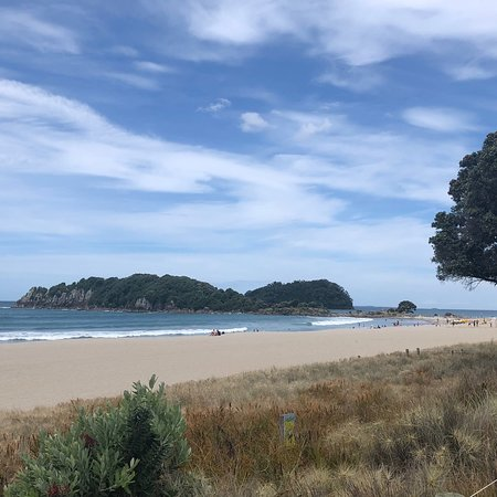 Mount Maunganui Beachside Holiday Park Picture