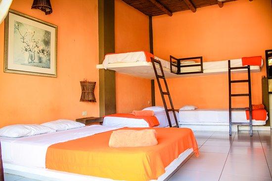 """El bungalow para 6 personas se denomina  """"Estrella de Mar"""" : consta de una cama doble y dos camarotes (4 camas), para una máximo de 6 personas. Asimismo, Tv con cable, ventilador de pie y de pared, agua caliente y frigobar. Baño con buenos acabados. Terraza con vista al jardín, con una hamaca y una silla """"perezosa""""."""