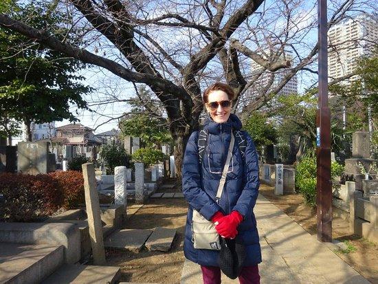 Аракава, Япония: Yanaka Cemetery in winter.