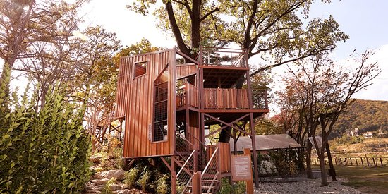 [Baumhaus] - Concept : Tree House, Photo Zone