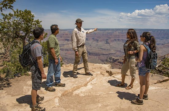 Grand Canyon South Rim Jeep Tour med...