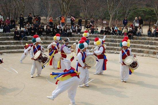 Fortaleza de Suwon Hwaseong e excursão...