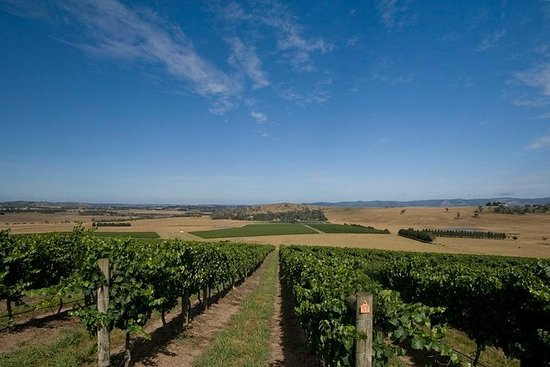 Yarra Valley Winery Tour fra...