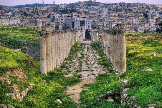 Privat Jerash Half Day Tour fra...