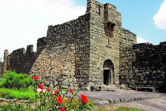 1-dags Desert Castle Private Tour fra...