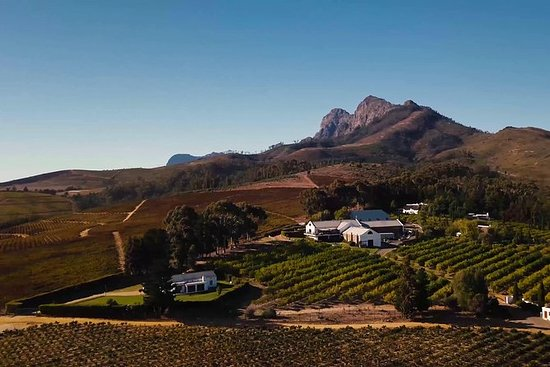 Half-Day Stellenbosch Winelands Tour...