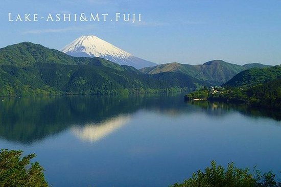 Custom Private Tour in Hakone with...