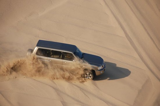 Private Half-Day Desert Safari from...